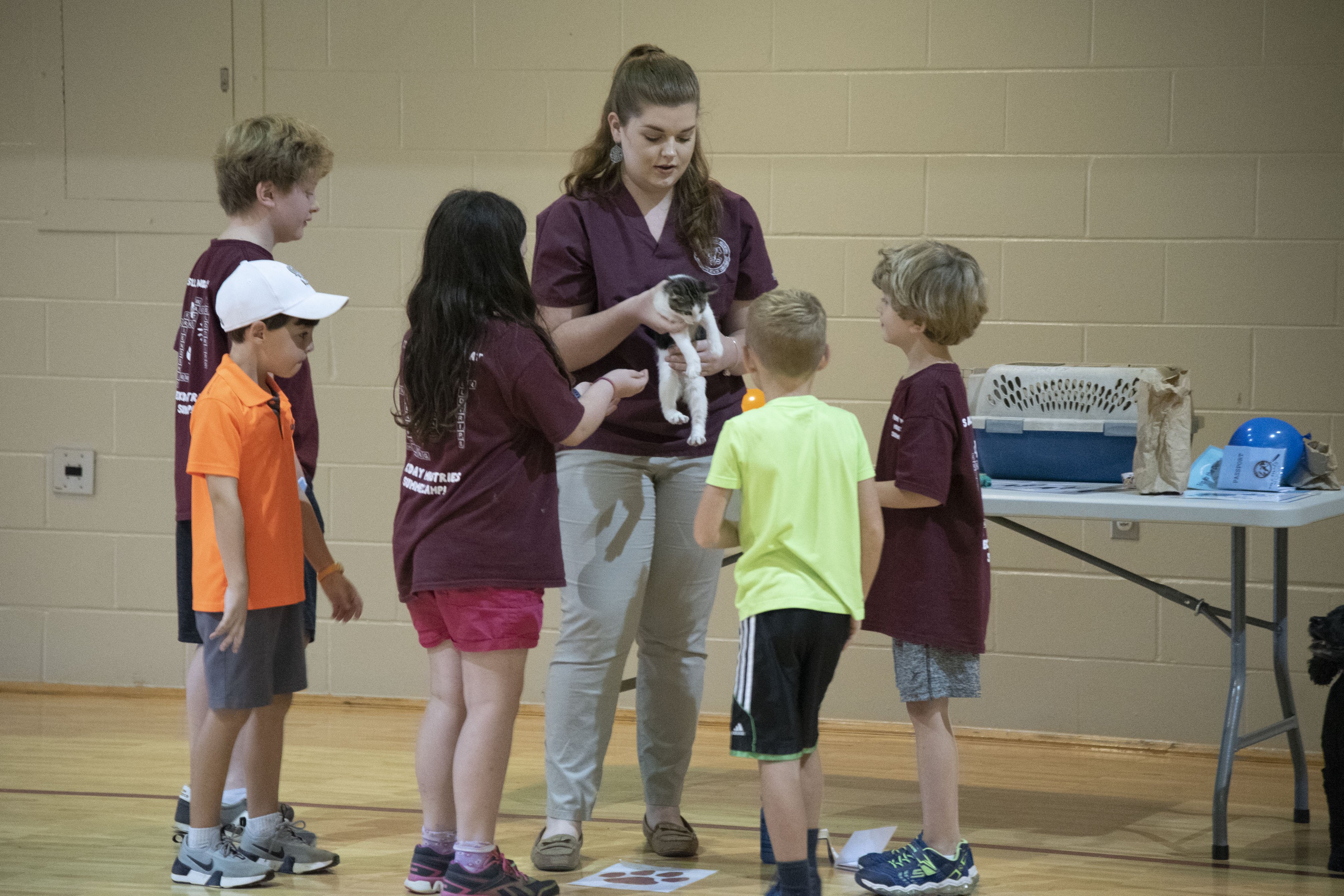 Young students observe a kitten