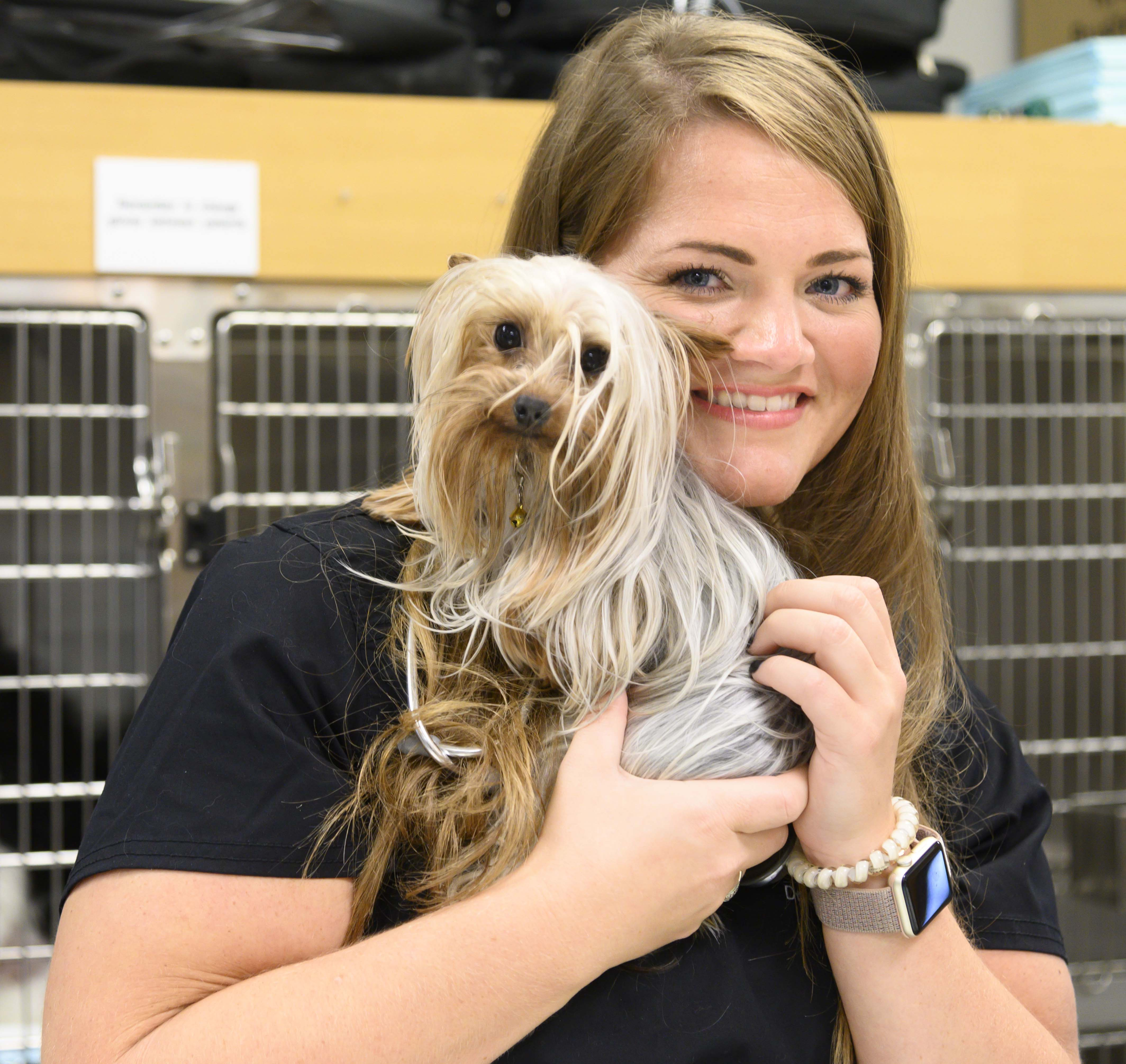 A veterinarian poses with a yorkie
