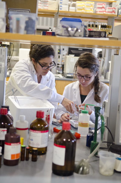 Two researchers perform work in a lab