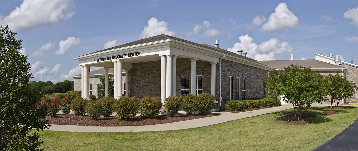Exterior shot of the Veterinary Specialty Center
