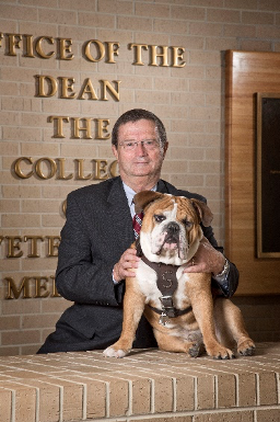 MSU CVM Dean Dr. Kent H. Hoblet with Bully